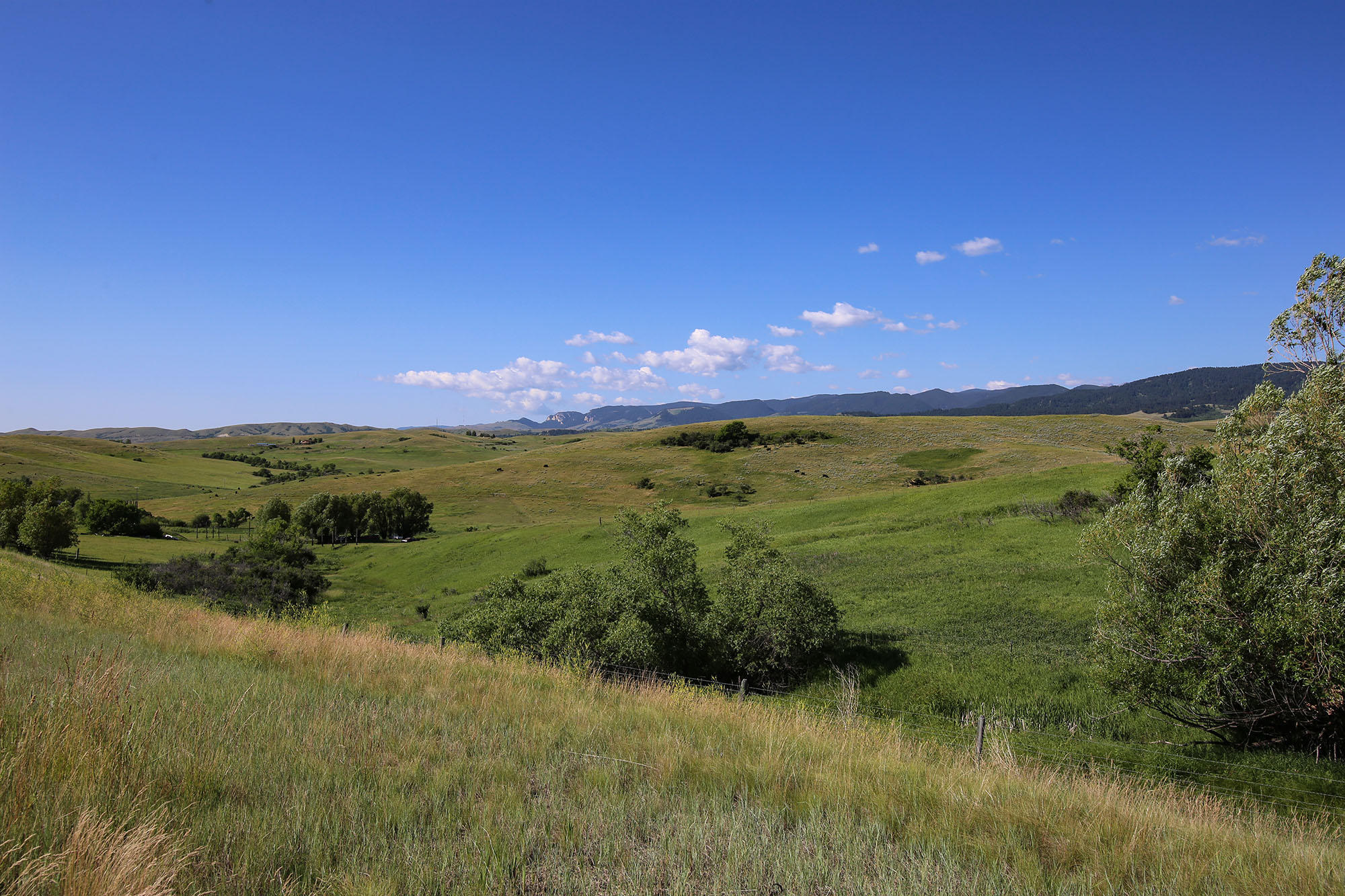 94 Pompey Creek Road, Banner, Wyoming 82832, ,Building Site,For Sale,Pompey Creek,20-600