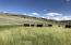 40000 E Buffalo Creek, Arminto, WY 82630
