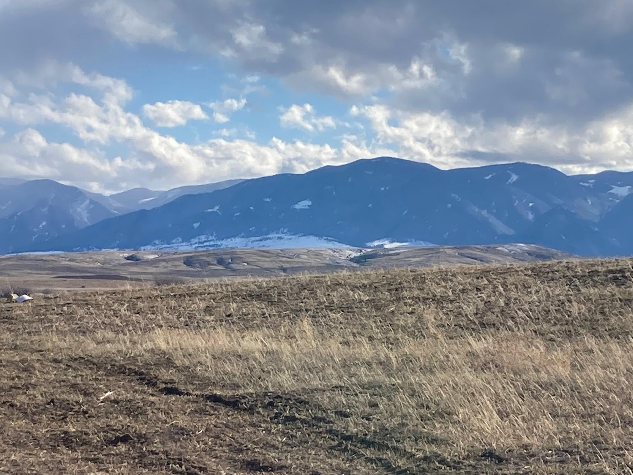 TBD TR Lot #12, Ranchester, WY 82839