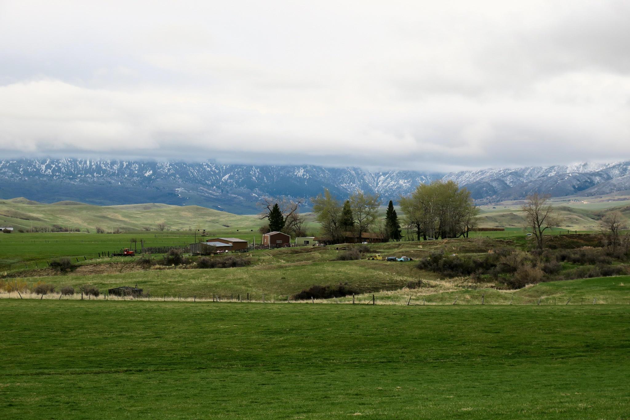470 Beaver Creek Road, Sheridan, Wyoming 82801, 2 Bedrooms Bedrooms, ,1 BathroomBathrooms,Ranch,For Sale,Beaver Creek,21-394