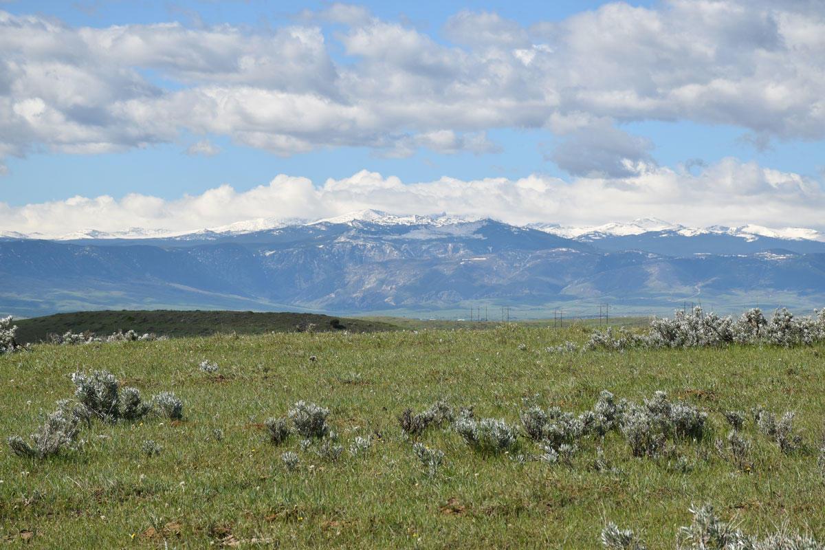 212 Lower Prairie Dog Road, Sheridan, Wyoming 82801, ,Ranch-Land,For Sale,Lower Prairie Dog,21-596