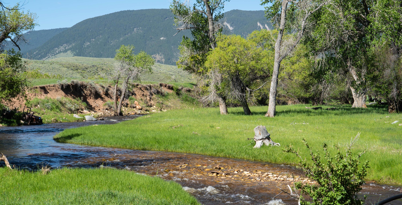 356 Greub, Buffalo, Wyoming 82834, ,Ranch-Land,For Sale,Greub,21-617