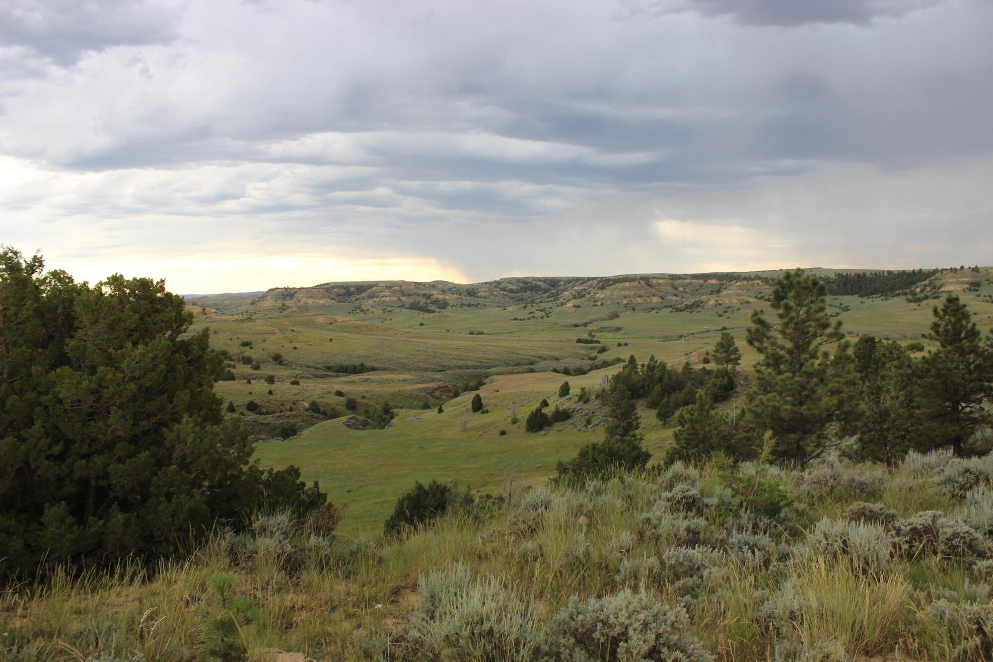 615 Fence Creek Road, Clearmont, Wyoming 82835, 5 Bedrooms Bedrooms, ,3 BathroomsBathrooms,Ranch,For Sale,Fence Creek,21-1045