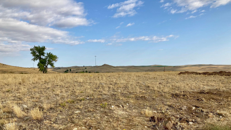 30 Gunderman, Buffalo, Wyoming 82834, ,Building Site,For Sale,Gunderman,21-1053