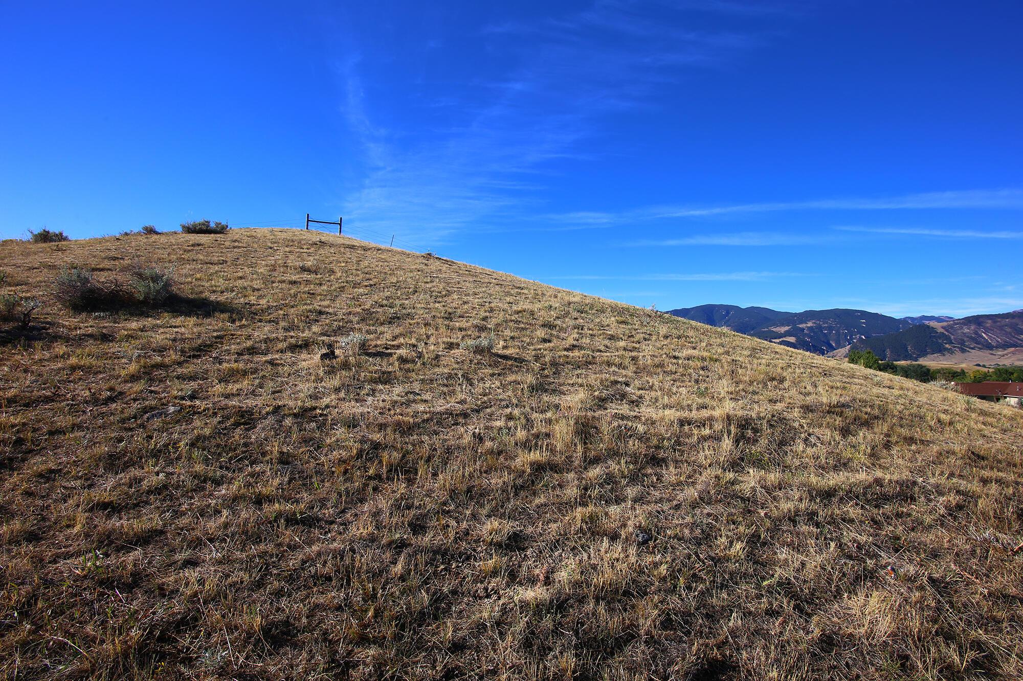 18 Black Mountain Drive, Dayton, Wyoming 82836, ,Building Site,For Sale,Black Mountain,21-834