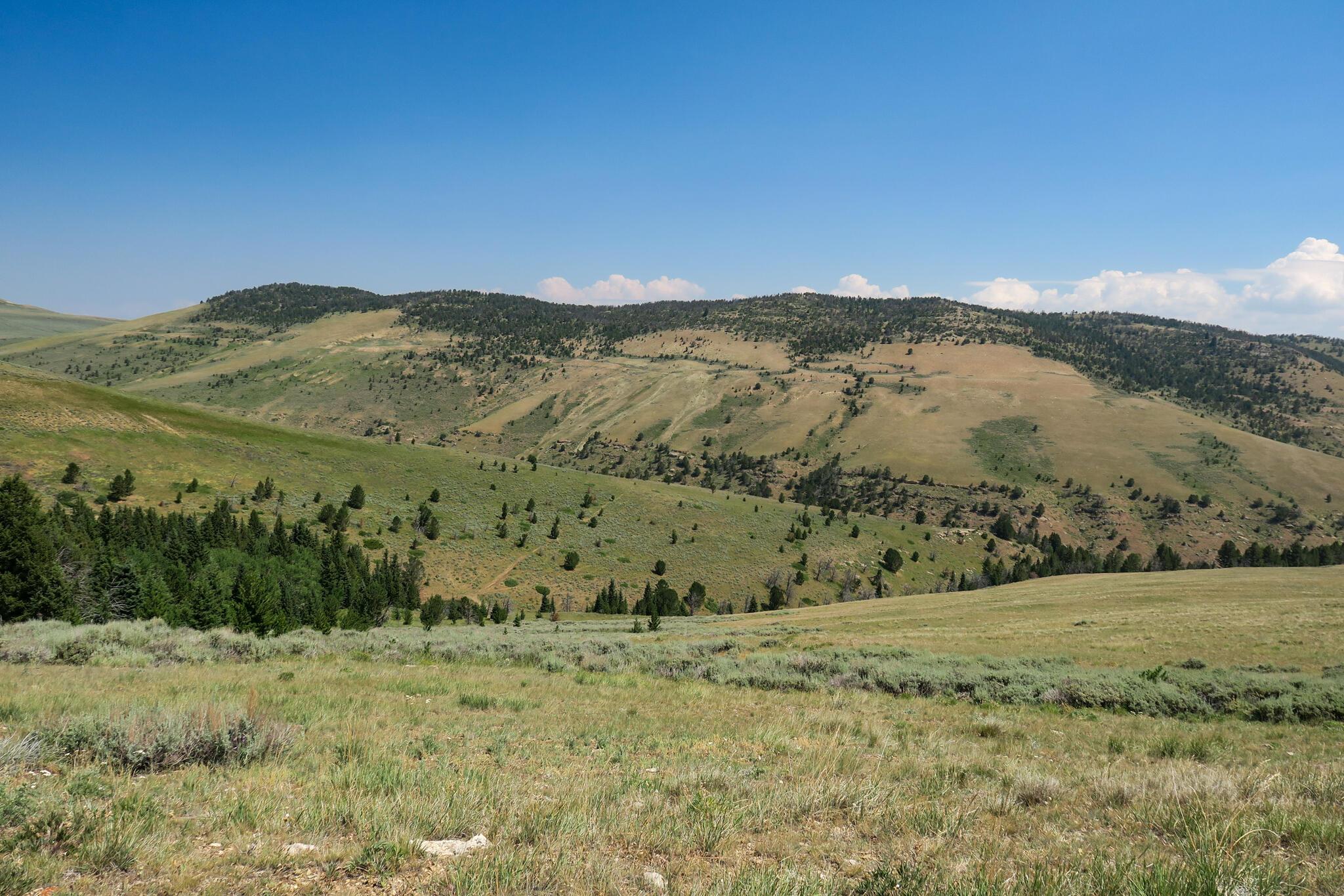 Hazelton Road, Kaycee, Wyoming 82639, ,Ranch-Land,For Sale,Hazelton,21-1192