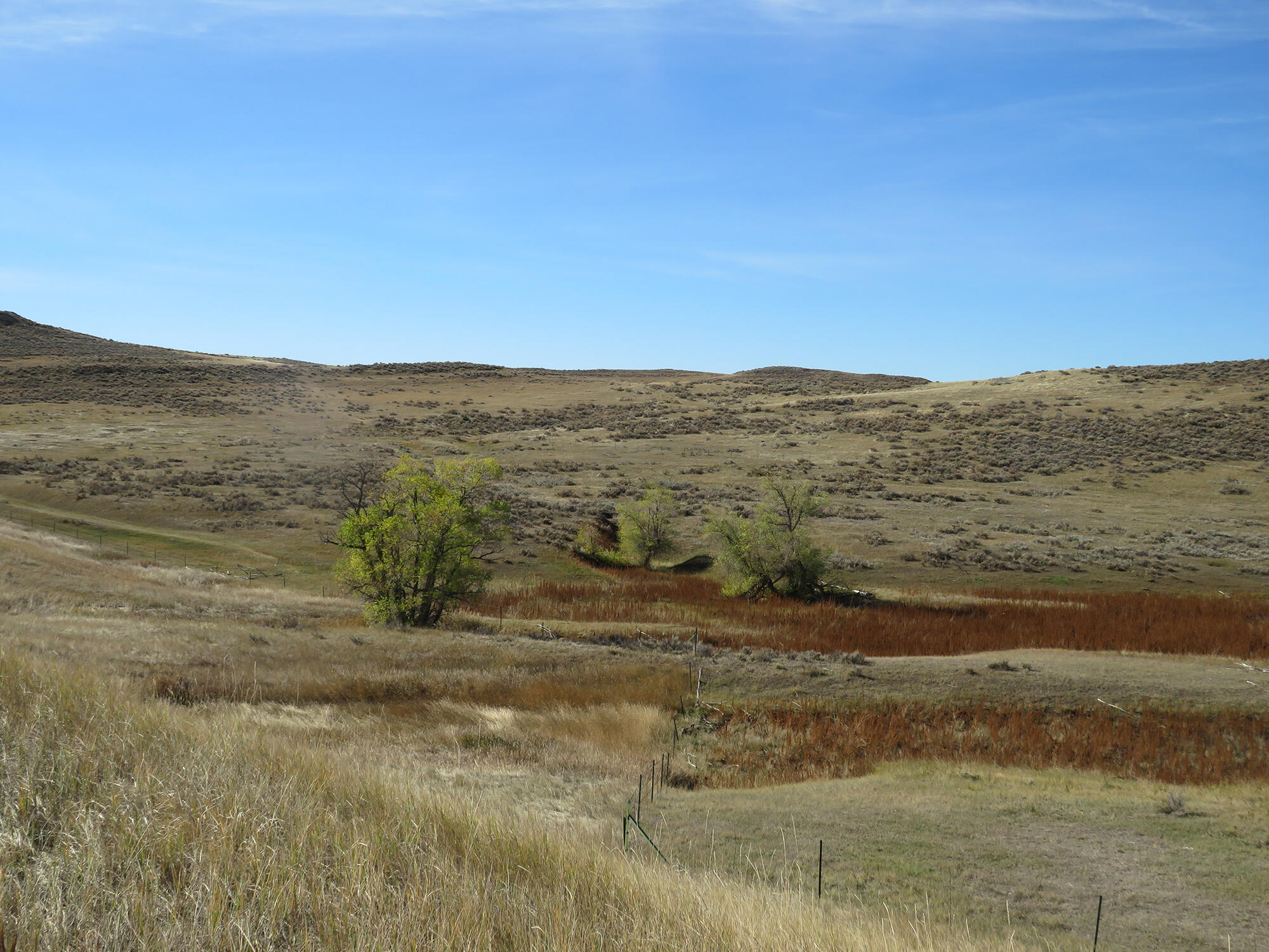 Tract 14 SW Decker Road, Sheridan, Wyoming 82801, ,Ranch-Land,For Sale,Decker,21-1200