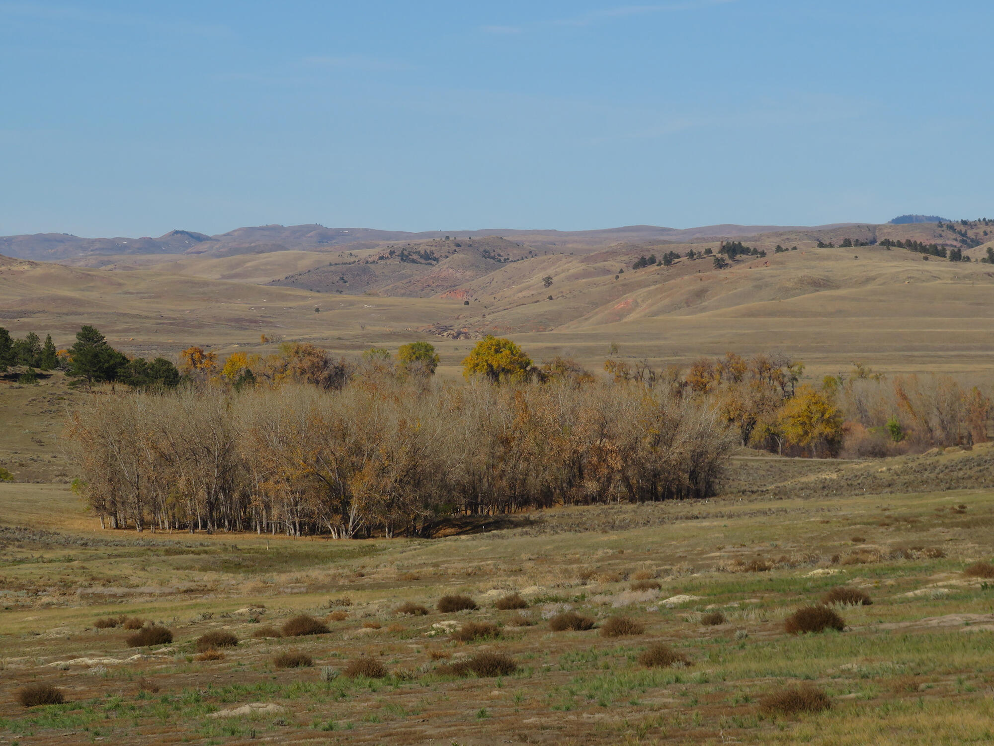 Tract 15 SW Decker Road, Sheridan, Wyoming 82801, ,Ranch-Land,For Sale,Decker,21-1201