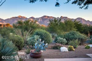 Catalina Mountain views from patio.