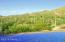 At least 1000 saguaros visible on the Tortolita Mountains.
