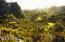 Stone Canyon's 9th hole