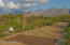 Private Walking Path from inside gated Sunset Canyon Estates to acclaimes Wilson K-8 School