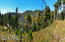 12717 N Upper Loma Linda Road, 1, Mt. Lemmon, AZ 85619
