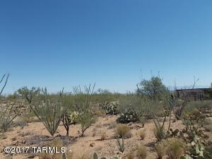 TBD W Wrangler Road, 30, Sahuarita, AZ 85629