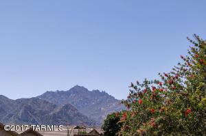 3738 E Mecate Road, Tucson, AZ 85739