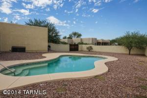 Sparkling backyard pool