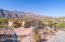 Enjoy the beautiful Sonoran Desert trees, cacti, and mountains.