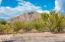 7656 N Andover Drive, Tucson, AZ 85704