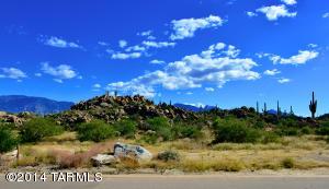 1484 W Tortolita Mountain Circle, 294, Oro Valley, AZ 85755