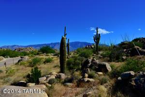 709 W Granite Gorge Drive W, 331, Oro Valley, AZ 85755