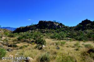 863 W Granite Gorge Drive W, 328, Oro Valley, AZ 85755