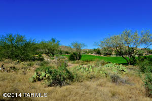 754 W Granite Gorge Drive W, 338, Oro Valley, AZ 85755