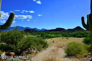 1452 W Tortolita Mountain Circle, 299, Oro Valley, AZ 85755