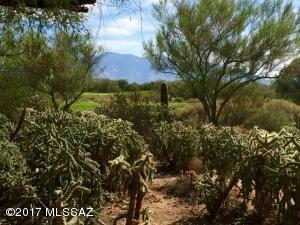 12932 N Eagle Mesa Place, Marana, AZ 85658