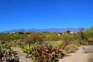 11305 E Pantano Trail, Tucson, AZ 85730