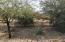 Desert surroundings