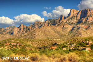Tucked against the Catalina mountain La Reserve offers easy access to amenities in an elite gated community.