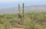 8076 S Circle C Ranch Road, L-254, Vail, AZ 85641