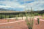 14888 E Diamond F Ranch Place, L-266, Vail, AZ 85641