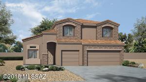 323 W William Carey Street, Vail, AZ 85641