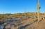 6464 W Whispering Windmill Lane, Marana, AZ 85658