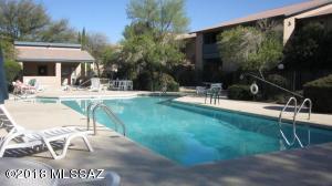 8080 E Speedway Boulevard, E307, Tucson, AZ 85710