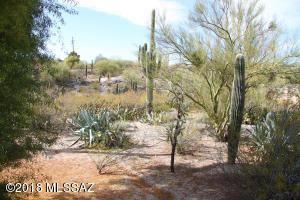 1021 E Vía Soledad, Tucson, AZ 85718