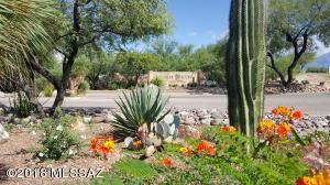 1033 E Cave Canyon Place, 154, Green Valley, AZ 85614