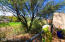 10611 N Sundust Court, Tucson, AZ 85737