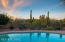 Tiered backyard includes desert plantings and citrus trees.