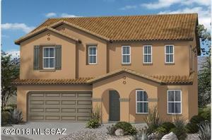 11578 W Oilseed Drive, Marana, AZ 85653