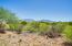 1091 S Dutch John Spring Court, Green Valley, AZ 85614