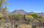 4328 W Thunder Ranch Place, Marana, AZ 85658