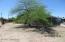 8134 E Holmes Place, Tucson, AZ 85710