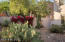 6209 N Ventana View Place, Tucson, AZ 85750