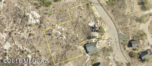 12897 N Phoenix Avenue N, 8, Mt. Lemmon, AZ 85619