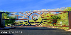 8375 S Tumbling R Ranch Place, L-164, Vail, AZ 85641