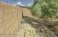 Walled back yard