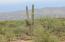 15503 E Hat Creek Ranch Place, Lot 48, Vail, AZ 85641