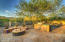 13948 N RUNNING CREEK Court, Marana, AZ 85658